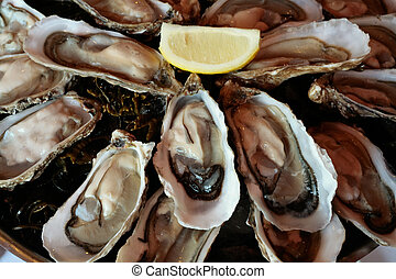 oysters on plate - plate with fresh oysters and lemon