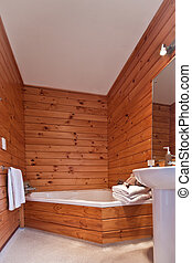 Fox Glacier Lodge apartment Interior - Bathroom interior....