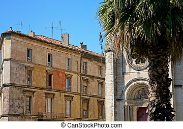 old houses and palm in Nimes, France