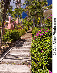 Steep 99 steps in St Thomas - Steps up the steep hill town...