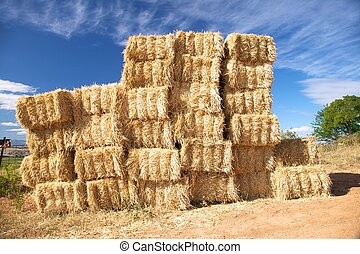 hay pile at the country of Castilla Spain