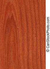 Mahogany (wood texture) - Texture of mahogany (high-detailed...