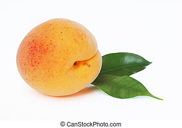 Apricot - Object on a white background