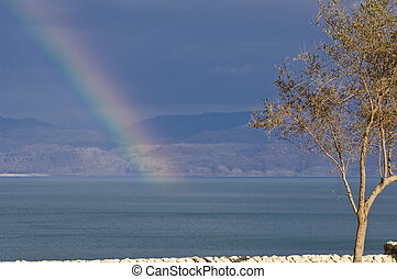 Promises - Rainbow over the Dead Sea in the Judean Desert.