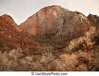 Red Rock Canyon Zion National Park Utah - Red Rock Zion...