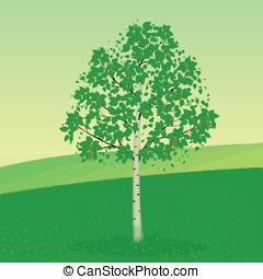 Abedul, árbol
