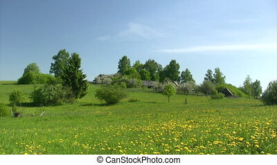 Rural landscape with apple garden,green field and white...