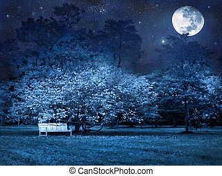 Full moon night in park - Mystical full moon starry night in...