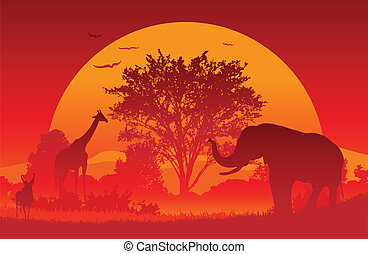 African Safari - Animals gather at an African Sunset Created...