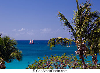 Boat sails between palm trees in the US Virgin Islands
