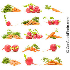 carrots and radishes collection isolated on white background