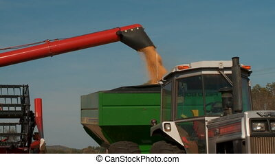 Soy Harvest 3 - Modern farming machinery at work harvesting...