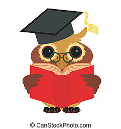 clever owl with book on white background