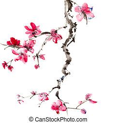 Chinese painting of flowers, plum blossom, on white...