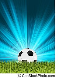 Football or soccer ball on grass EPS 8 - Football or soccer...
