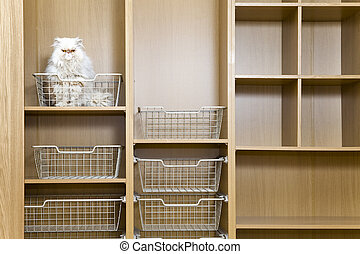 Empty wardrobe with regiments and wire baskets and a white...