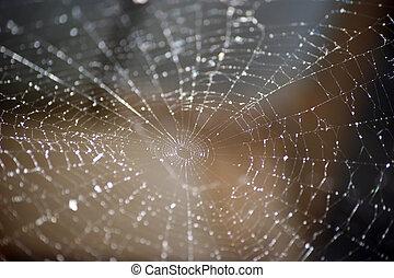 aranha, teia, abstratos