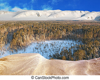 Aerial taiga 4 MS - Wild taiga in west Siberia. Aerial view....