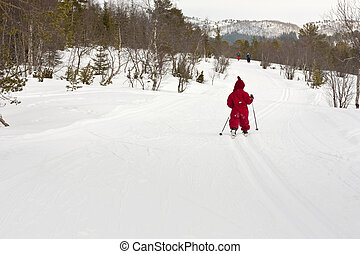 Several people skiing in the forest, including small child (4 years old).
