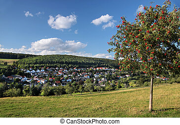 Landscape in the Taunus mountains - village in the Taunus...