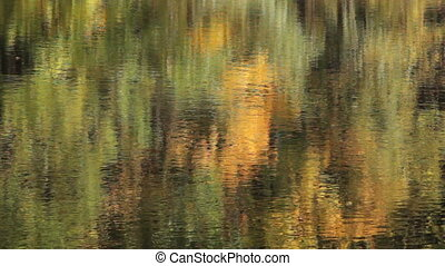 water reflection - bright autumn forest is reflected on the...