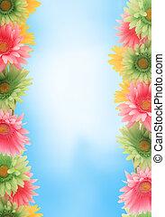 floral, primavera, frontera, colorido
