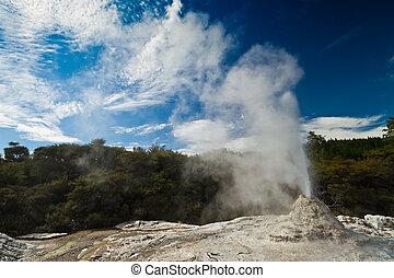 Lady Knox Geyser landscape - Wai-O-Tapu Wonderland....