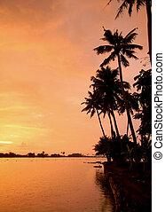 Orange sunset in Kerala India - Orange sunset on the...