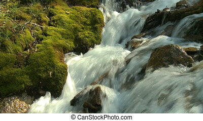 Small mountain stream - Mountain stream with moss