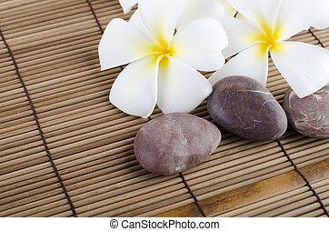 frangipani on stock of rocks
