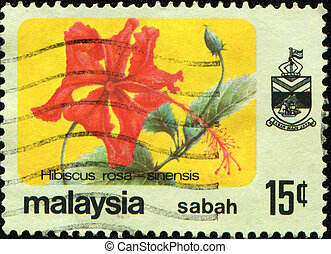 Hibiscus rosa - MALAYSIA - CIRCA 1979: A stamp printed in...