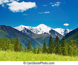 Mountain landscape - Landscape with snowy mountain and blue...