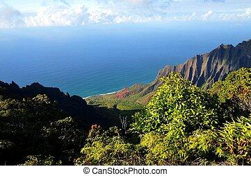 Napali Coast and Foliage - Napali and the vegetation of...
