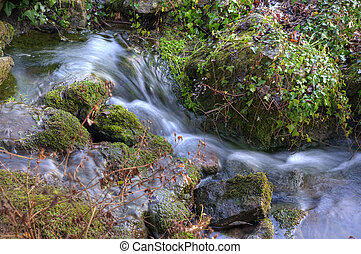 Beautiful close up of babbling brook in mountain forest -...