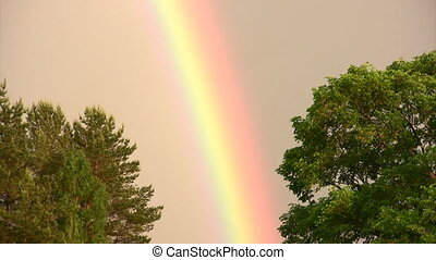 Colors of rainbow - Natural phenomenon of a rainbow after...