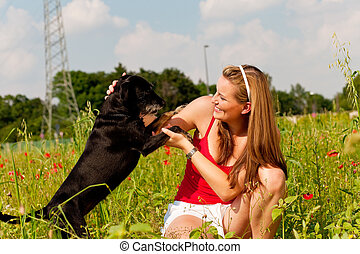 Woman playing with her dog in a meadow - Woman is playing...