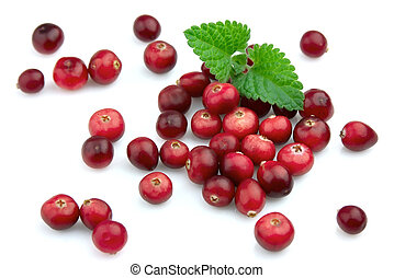 Ripe cranberry with a mint