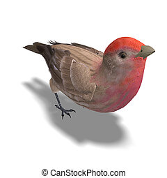 Male House Finch. 3D rendering with clipping path and shadow over white