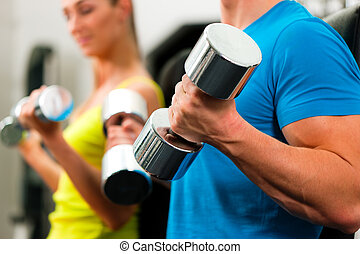 couple in gym exercising with dumbbells - couple in the gym,...