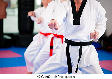Martial Arts sport training in gym - People in a gym in...