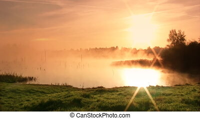 Sunrise on the swamp - Misty morning sunrise on the swamp