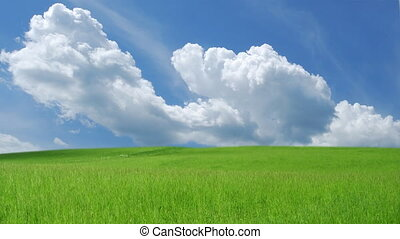 Sky with clouds over green grass