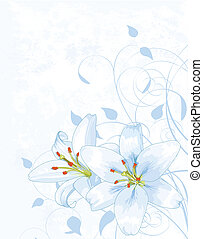 Lilly on light blue background - Lilly on light blue...