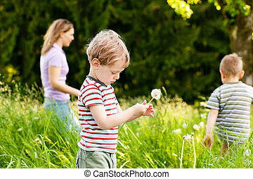Family summer - blowing dandelion seeds - Little boy blowing...