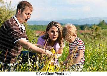 Family summer - playing on the meadow