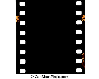 Photographic Negatives - Photographic negatives isolated...