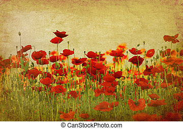 field of red poppies on ambient background