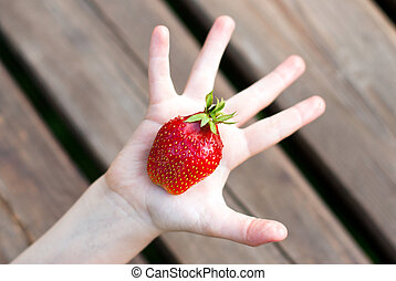 red strawberries in a baby arm - ripe red strawberries in a...