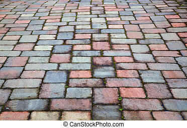 Red and blue paver patio