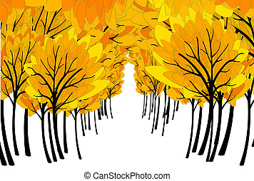 fall colored forest and copyspace